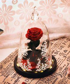 Rose Éternelle La Belle Et La Bête